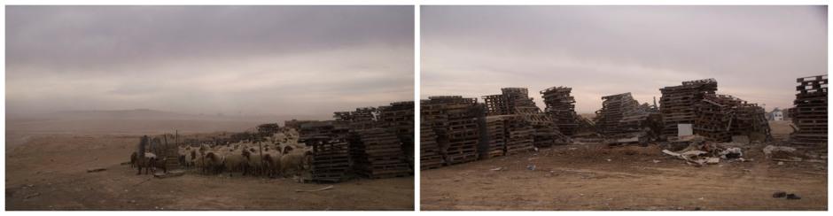 bedouin village, negev