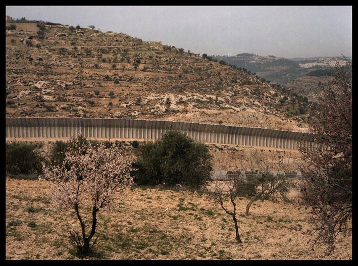 apartheid wall, near bethlehem, palestine