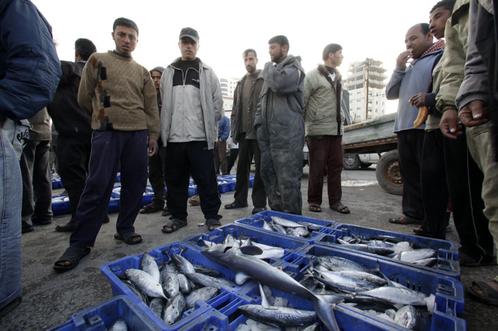Gaza City fish market