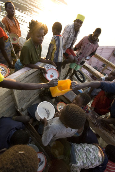 early morning fish delivery, Monkey Bay, Lake Malawi