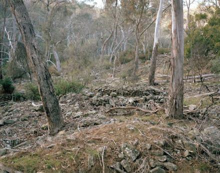 Mistletoe Mine, Hepburn, VIC, 2013